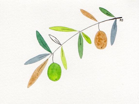 Olive_-_3[1]