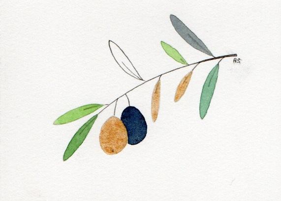 Olive_-_4[1]